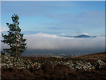 S8757 : Above the Cloud by kevin higgins