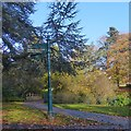 ST3087 : A sign post in Belle Vue Park, Newport by Robin Drayton