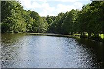 TQ4945 : Lake, Chiddingstone Castle by N Chadwick