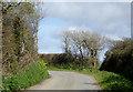 SS2320 : Lane east of Hardisworthy in Devon by Roger  Kidd