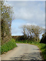 SS2320 : Lane to Lutsford in Devon by Roger  Kidd