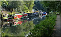 SO8999 : Narrowboats moored along the Staffordshire and Worcestershire Canal by Mat Fascione