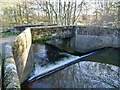 SK3343 : Bridge and weir on the River Ecclesbourne by Ian Calderwood