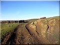 SD8420 : Farm Track at Boarsgrove by David Dixon
