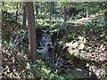 NY8262 : Small Waterfall on Black Byre Burn by Les Hull