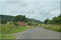 SU8311 : B2141 near Dean Cottages by N Chadwick