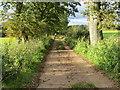 SO3214 : Farm Track near White Horse Farm by Peter Wood
