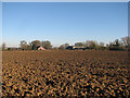 TL5377 : Near Braham Farm by John Sutton