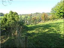 SO8808 : Wysis Way-side field - Painswick, Gloucestershire by Martin Richard Phelan