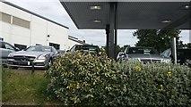 TQ1983 : Mercedes garage, Park Royal by David Howard