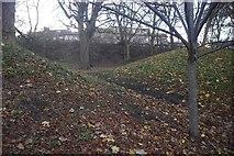 NT2674 : Royal Terrace Gardens by Richard Webb