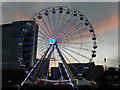 SP0686 : The Birmingham Wheel by Stephen McKay
