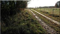 TG3502 : Farm track to Hazelmere Hole by Evelyn Simak