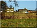 SD7512 : Castle Farm by Philip Platt