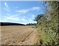 NZ0557 : Field on the east side of Lead Lane by Robert Graham