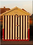 TQ2704 : Beach Hut 319, Western Esplanade, Hove by Simon Carey