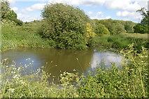 TQ5145 : River Eden by N Chadwick