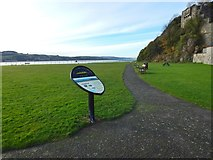 NS4074 : Interpretation panel at Dumbarton Rock by Lairich Rig