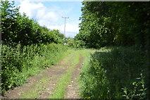 TQ5246 : Footpath by Redleaf Wood by N Chadwick