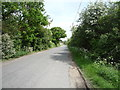 TL6255 : Minor road, Burrough End by JThomas