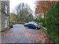 SK0573 : Fallen leaves by Bob Harvey
