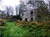 H5371 : Ruined corn mill, Bracky by Kenneth  Allen