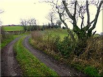 H5371 : Lane, Bancran by Kenneth  Allen