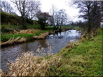 H5371 : Camowen River, Bancran by Kenneth  Allen