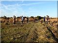 TQ4628 : Filming on Ashdown Forest by Marathon