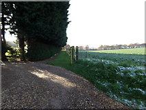 TG0822 : Track off Kerdiston Road by Geographer