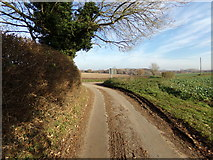 TG0723 : Old Lane, Kerdiston by Adrian Cable