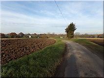 TG0723 : Kerdiston Road, Kerdiston by Adrian Cable