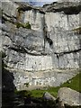 SD8964 : The cliff face at Malham Cove by David Smith