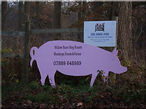 TM2971 : Willow Farm Hog Roasts sign by Geographer