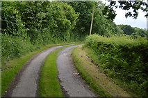 TQ5346 : Track to Cinder Hill by N Chadwick