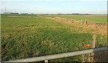 ST7879 : Farmland between Tormarton and Acton Turville by Derek Harper