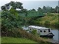 TL4296 : Footbridge across the River Nene (old course) by Mat Fascione