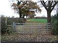 SJ5162 : Field entrance and footpath off Hoofield Lane by JThomas