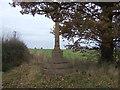 SJ4665 : Monument on Plough Lane by JThomas