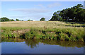 SJ5948 : Canalside pasture near Wrenbury in Cheshire by Roger  Kidd