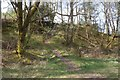 NN4527 : Ben More path by Richard Webb