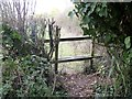 ST9964 : Broken stile [3] by Michael Dibb