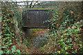 SX4672 : Tavistock Canal Bridge by Guy Wareham