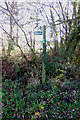 TM3671 : Footpath sign off the C209 Peasenhall Road by Adrian Cable