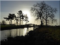 SO8844 : Low winter sun silhouetting the Chinese Bridge by Philip Halling