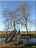 SO8844 : Chinese Bridge, Croome Park by Philip Halling