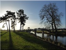 SO8844 : Low winter sun in Croome Park by Philip Halling