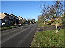 TL8364 : Flemyng Road, Bury St. Edmunds by Hugh Venables