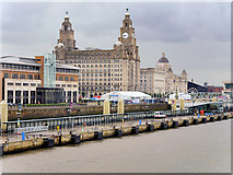 SJ3390 : Liverpool Cruise Terminal Landing Stage and Royal Liver Building by David Dixon