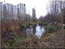 TQ3784 : Wetlands Walk in The Queen Elizabeth Olympic Park by Marathon